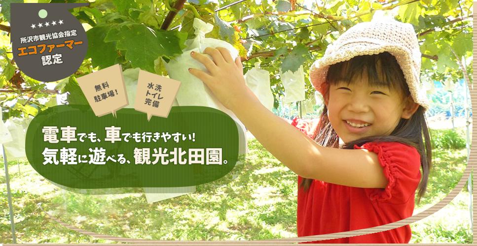所沢市観光協会指定・エコファーマー認定。無料駐車場・水洗トイレ完備。電車でも、車でも行きやすい!気軽に遊べる、観光北田園