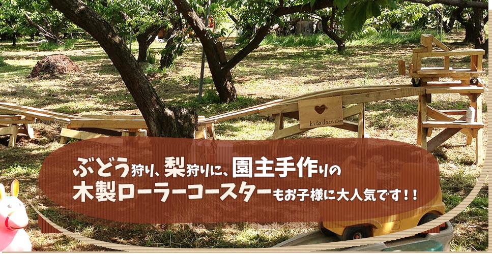 ぶどう狩り、梨狩りに、園主手作りの木製ローラーコースターもお子様に人気です